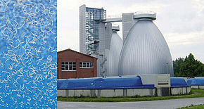 Case Study - sewage plant in south Germany - BioCrack