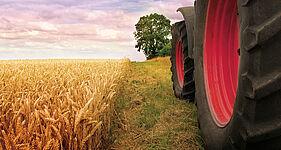 Caso práctico: Planta de biogás Hedeper, BioCrack