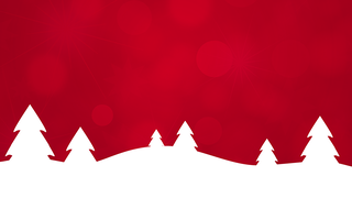 SEASON'S GREETINGS FROM YOUR VOGELSANG TEAM.