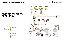EnergyJet EJ40 und EJ40 CS - Feststoffdosierer von Vogelsang